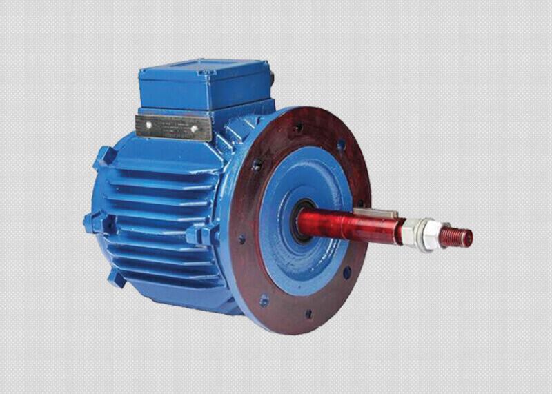 Cooling Tower Motors Manufacturer